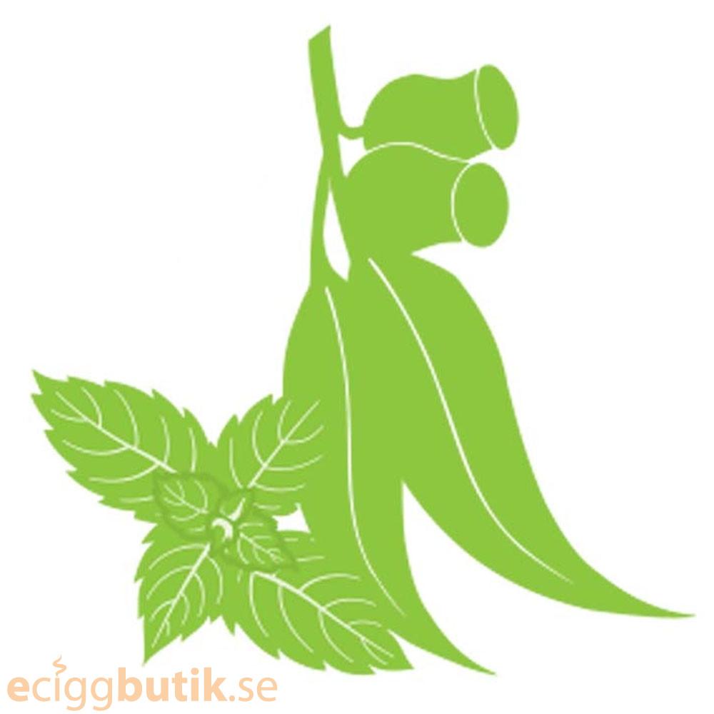 Eucalyptus With Mint Aroma