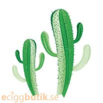 Cactus Aroma