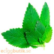 E-Mint Aroma
